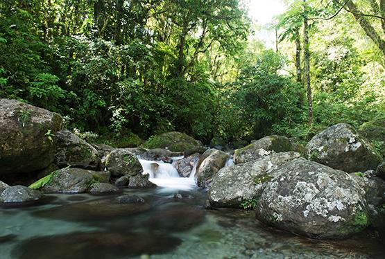 jpg_D-_GIRAL_riviere_nature_3_34_.jpg